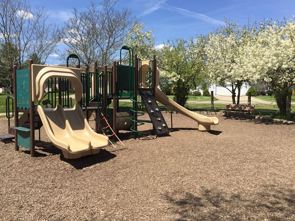 The Plains Elementary Playground